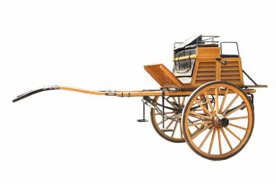 db Tandem-Dog-Cart-IMG 8669 Kopie1